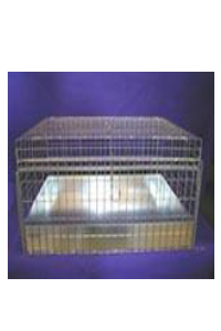 24x24x12 Cavy Cage